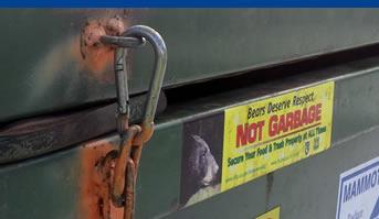 bear resistant dumpster